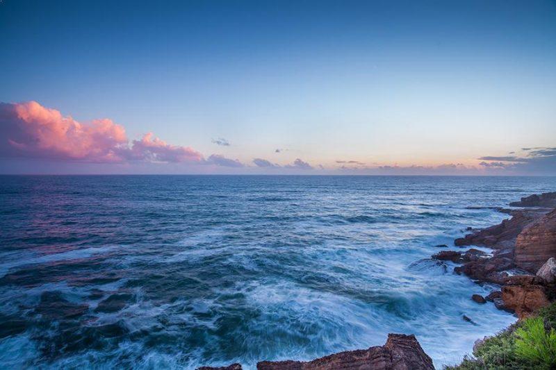 Coastline litter