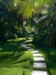 tropical-landscape